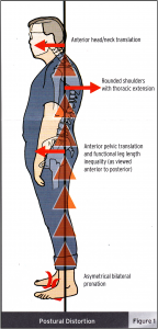 Foot Levelers Pronation Effects